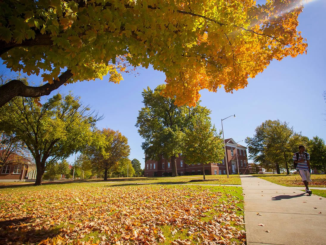National Student Exchange   Profile: Arkansas Tech University